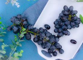一组甜甜的山葡萄图片欣赏