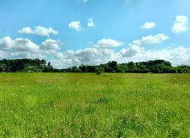 绿色草原自然风光桌面壁纸