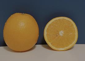 一组唯美拍摄的橘子图片