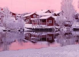 瑞典的粉色冬日