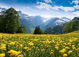 阿尔卑斯山高清自然美景