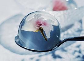 晶莹Q弹的果冻图片