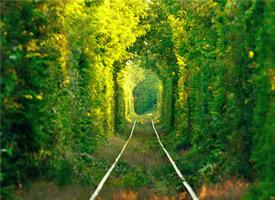 想和你手牵手一起穿过乌克兰爱情隧