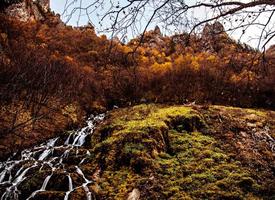 青海北山森林公园风景图片