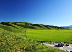 去桑科草原,来一场美丽的邂逅