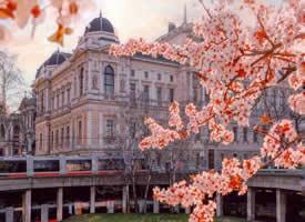 维也纳的春日暮色