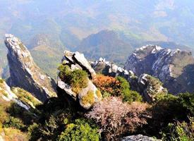 美丽的庐山风景图片