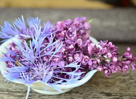 紫色丁香花唯美图片桌面壁纸