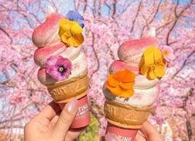 一组回味无穷的冰淇淋图片
