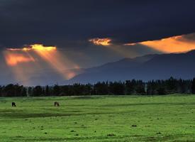 塞外江南,人间天堂——那拉提大草原