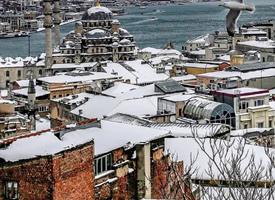伊斯坦布尔的秋末冬初,很文艺的城市