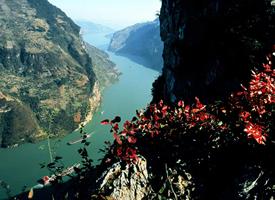 风景秀丽的长江三峡图片