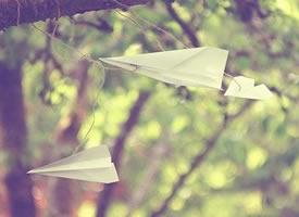关于纸飞机的LOMO意境唯美图片