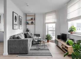 45㎡北欧风单身公寓
