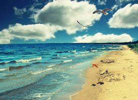 一组美丽海滩图片