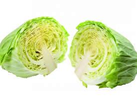 绿色的卷心菜图片