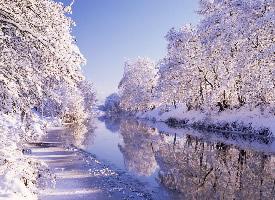 一组耀眼洁白的雪景图片