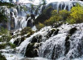 壮观的珍珠滩瀑布风景图片