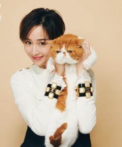 张钧甯温馨吸猫大片写真图片
