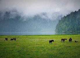 香格里拉,普达措国家公园