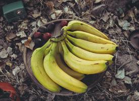 迷人的秋色里的香蕉图片
