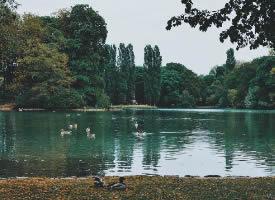 位于伊萨尔河畔,慕尼黑英国花园 