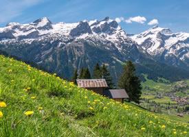 瑞士伯尔尼自然风光桌面壁纸