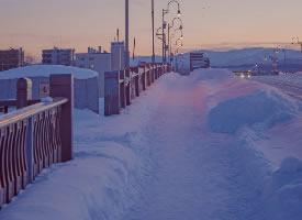 北海道的世纪大雪,浪漫迷人