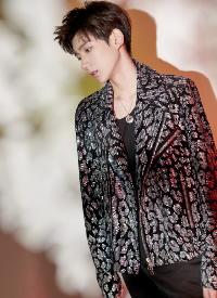 王源身穿银色水钻豹纹皮衣梦幻又潮酷