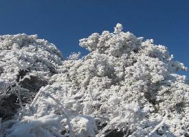 一组唯美的崂山冬景图片