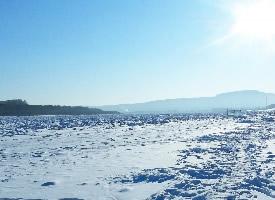 一组北极村雪景风光图片