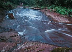 黄荆老林溪流风景图片