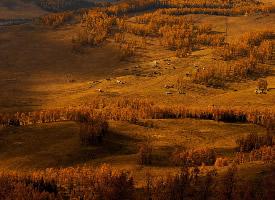 新疆秋季风光壁纸图片