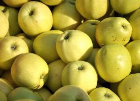 酸甜味道的青苹果图片
