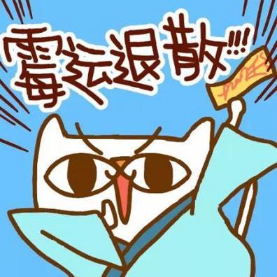 好运喵搞笑创意qq卡通带字头像图片