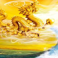 富丽堂皇的古代中国龙头像图片大全