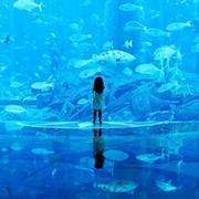 二次元唯美動漫藍色qq夢幻頭像圖片