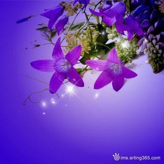 唯美浪漫的紫色花卉qq意境头像图片