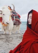 张辛苑西藏写真 天湖边的少女唯美纯净