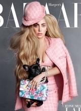 lady gaga登杂志封面 性感网袜突显聊骚个性