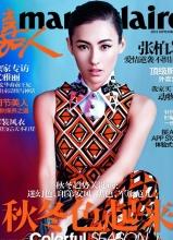 张柏芝登嘉人杂志 为电影做宣传