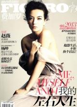 赵薇登费加罗杂志12月刊封面
