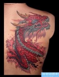 男生腹部经典帅气的龙纹身图片