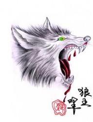 霸氣的狼頭紋身手稿
