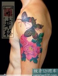 蝴蝶牡丹紋身作品圖案