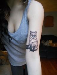 非常可爱漂亮的手臂狐狸纹身
