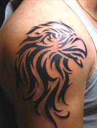 大年夜臂上帅气的老鹰图腾纹身