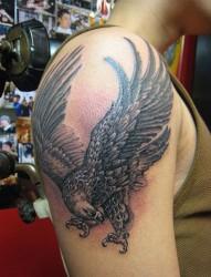 大臂上展示飞翔的老鹰纹身