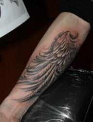 双手变成翅膀努力的飞翔