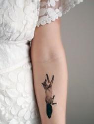 手臂上可爱的小动物纹身